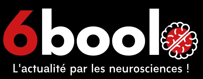 6boolo